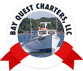 Bay Quest Fishing Charters